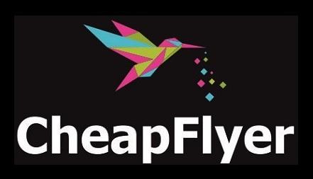 логотип чипфлаер__